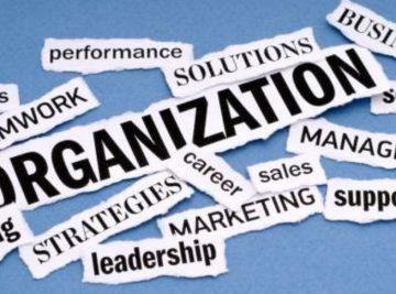 scenario-organization